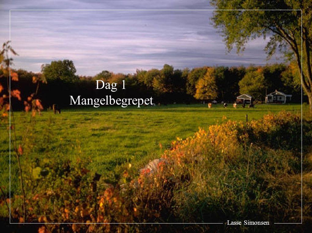 Lasse Simonsen Dag 1 Mangelbegrepet