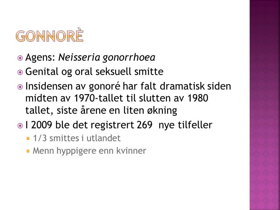 Agens: Neisseria gonorrhoea Genital og oral seksuell smitte Insidensen av gonoré har falt dramatisk siden midten av 1970-tallet til slutten av 1980 ta