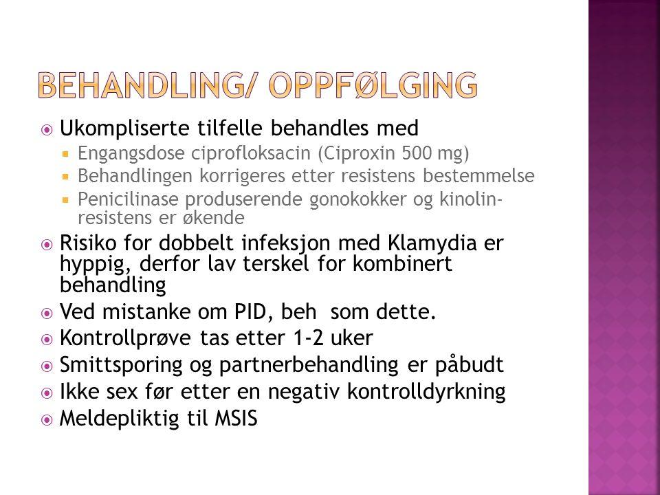 Ukompliserte tilfelle behandles med Engangsdose ciprofloksacin (Ciproxin 500 mg) Behandlingen korrigeres etter resistens bestemmelse Penicilinase prod
