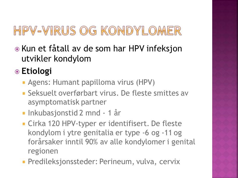 Kun et fåtall av de som har HPV infeksjon utvikler kondylom Etiologi Agens: Humant papilloma virus (HPV) Seksuelt overførbart virus. De fleste smittes