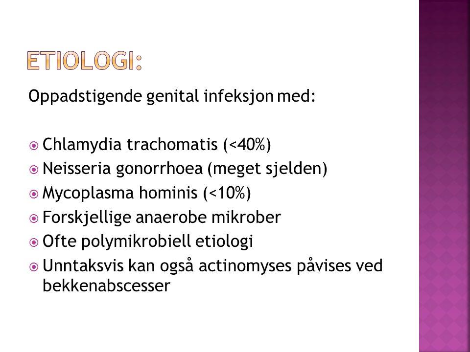 Oppadstigende genital infeksjon med: Chlamydia trachomatis (<40%) Neisseria gonorrhoea (meget sjelden) Mycoplasma hominis (<10%) Forskjellige anaerobe
