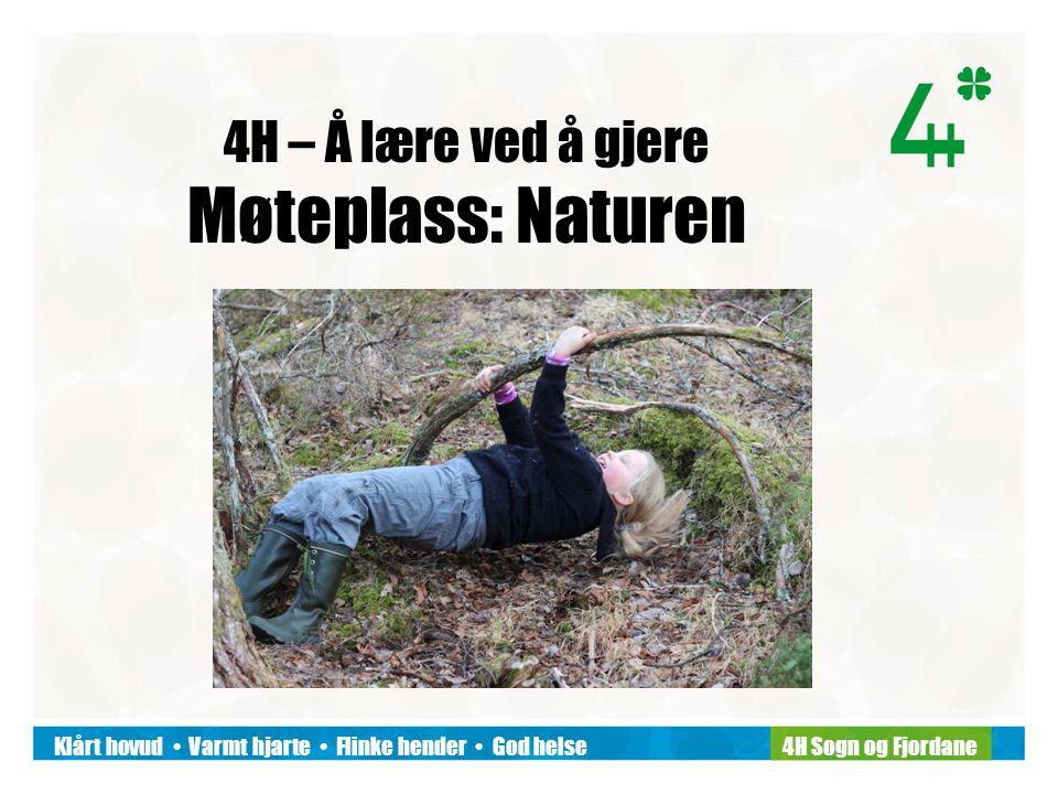 Klårt hovud Varmt hjarte Flinke hender God helse4H Sogn og Fjordane 4H – Å lære ved å gjere Møteplass: Naturen