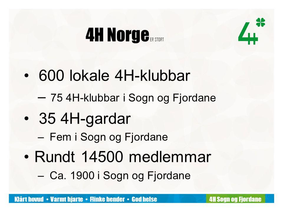 Klårt hovud Varmt hjarte Flinke hender God helse4H Sogn og Fjordane 4H Norge ER STORT 600 lokale 4H-klubbar – 75 4H-klubbar i Sogn og Fjordane 35 4H-gardar – Fem i Sogn og Fjordane Rundt 14500 medlemmar – Ca.