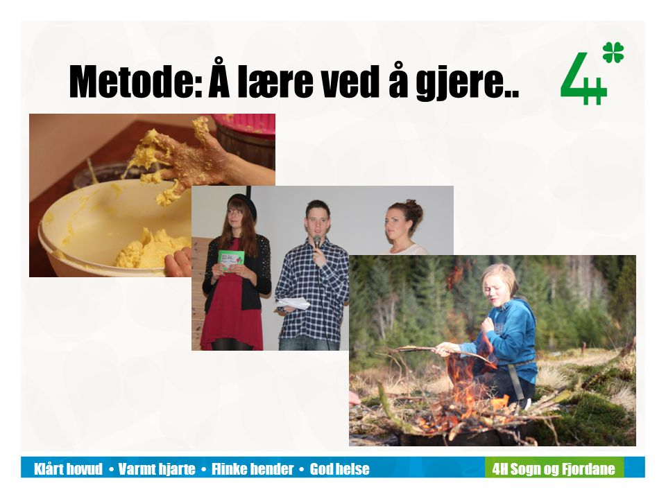 Klårt hovud Varmt hjarte Flinke hender God helse4H Sogn og Fjordane..saman..