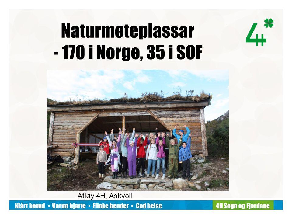 Klårt hovud Varmt hjarte Flinke hender God helse4H Sogn og Fjordane Naturmøteplassar - 170 i Norge, 35 i SOF Atløy 4H, Askvoll