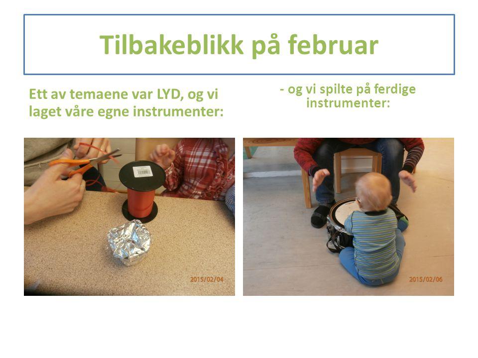 Tilbakeblikk på februar Ett av temaene var LYD, og vi laget våre egne instrumenter: - og vi spilte på ferdige instrumenter: