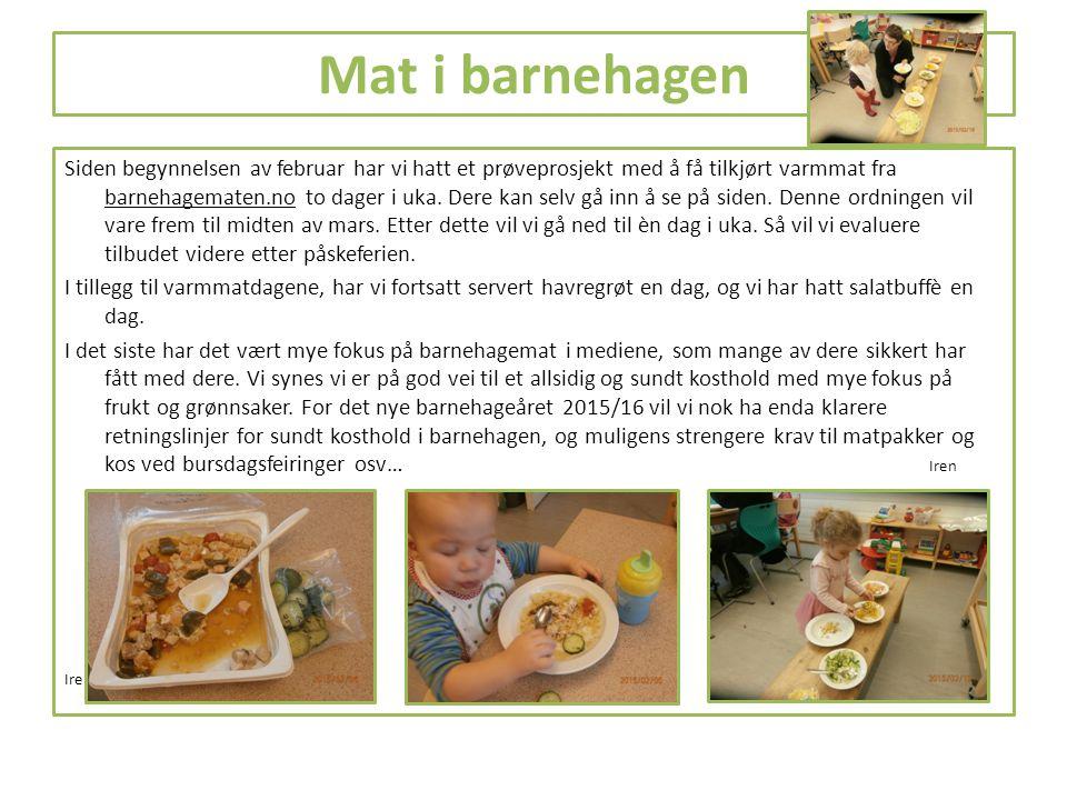 Mat i barnehagen Siden begynnelsen av februar har vi hatt et prøveprosjekt med å få tilkjørt varmmat fra barnehagematen.no to dager i uka. Dere kan se