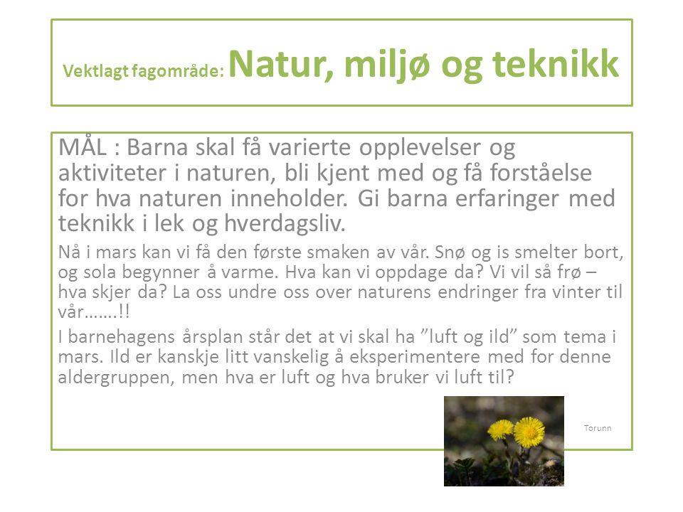 Vektlagt fagområde: Natur, miljø og teknikk MÅL : Barna skal få varierte opplevelser og aktiviteter i naturen, bli kjent med og få forståelse for hva