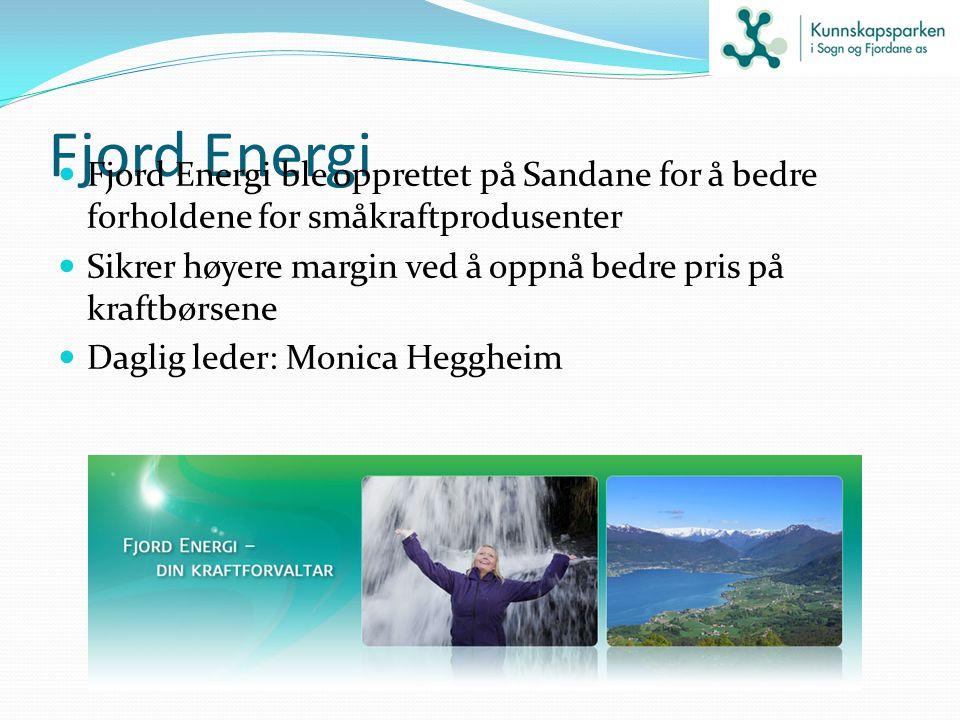 Fjord Energi Fjord Energi ble opprettet på Sandane for å bedre forholdene for småkraftprodusenter Sikrer høyere margin ved å oppnå bedre pris på kraft