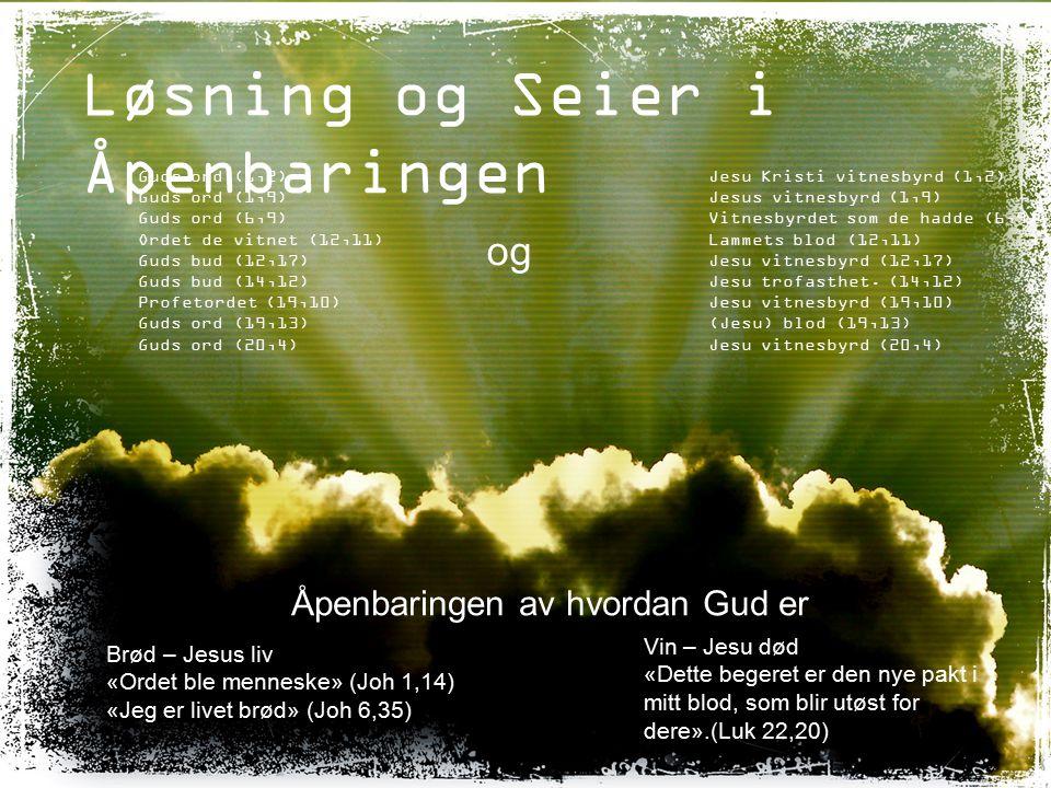 Løsning og Seier i Åpenbaringen Guds ord (1,2) Guds ord (1,9) Guds ord (6,9) Ordet de vitnet (12,11) Guds bud (12,17) Guds bud (14,12) Profetordet (19,10) Guds ord (19,13) Guds ord (20,4) Jesu Kristi vitnesbyrd (1,2) Jesus vitnesbyrd (1,9) Vitnesbyrdet som de hadde (6,9) Lammets blod (12,11) Jesu vitnesbyrd (12,17) Jesu trofasthet.