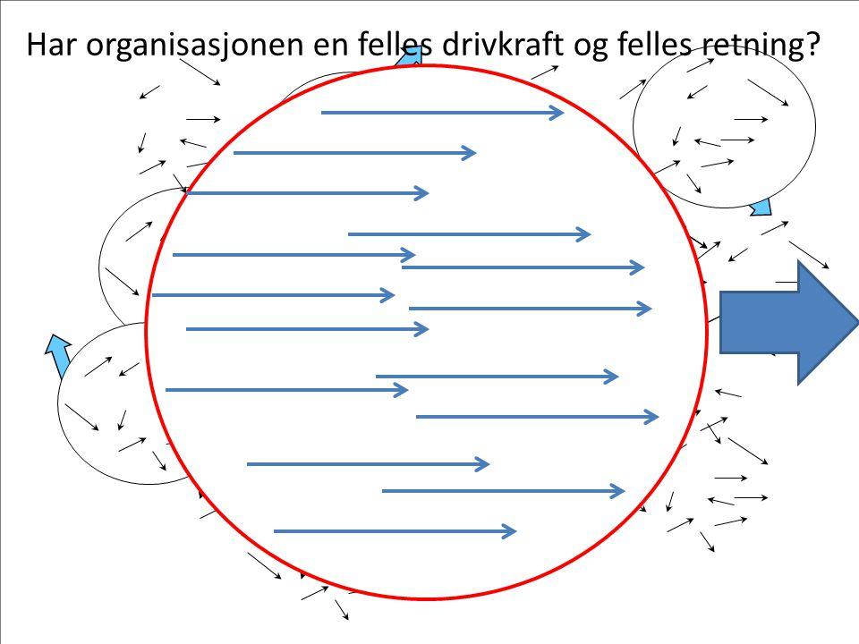 Har organisasjonen en felles drivkraft og felles retning?