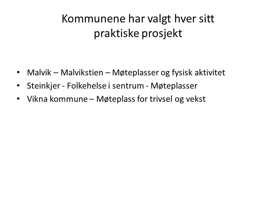 Kommunene har valgt hver sitt praktiske prosjekt Malvik – Malvikstien – Møteplasser og fysisk aktivitet Steinkjer - Folkehelse i sentrum - Møteplasser Vikna kommune – Møteplass for trivsel og vekst