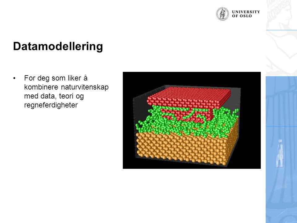 Datamodellering For deg som liker å kombinere naturvitenskap med data, teori og regneferdigheter