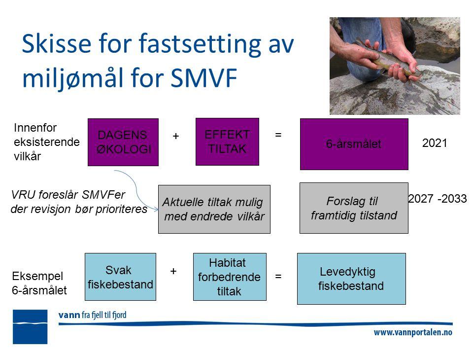 Skisse for fastsetting av miljømål for SMVF DAGENS ØKOLOGI + EFFEKT TILTAK = 6-årsmålet Svak fiskebestand + Habitat forbedrende tiltak = Levedyktig fiskebestand 2021 2027 -2033 Forslag til framtidig tilstand Innenfor eksisterende vilkår VRU foreslår SMVFer der revisjon bør prioriteres + Aktuelle tiltak mulig med endrede vilkår Eksempel 6-årsmålet