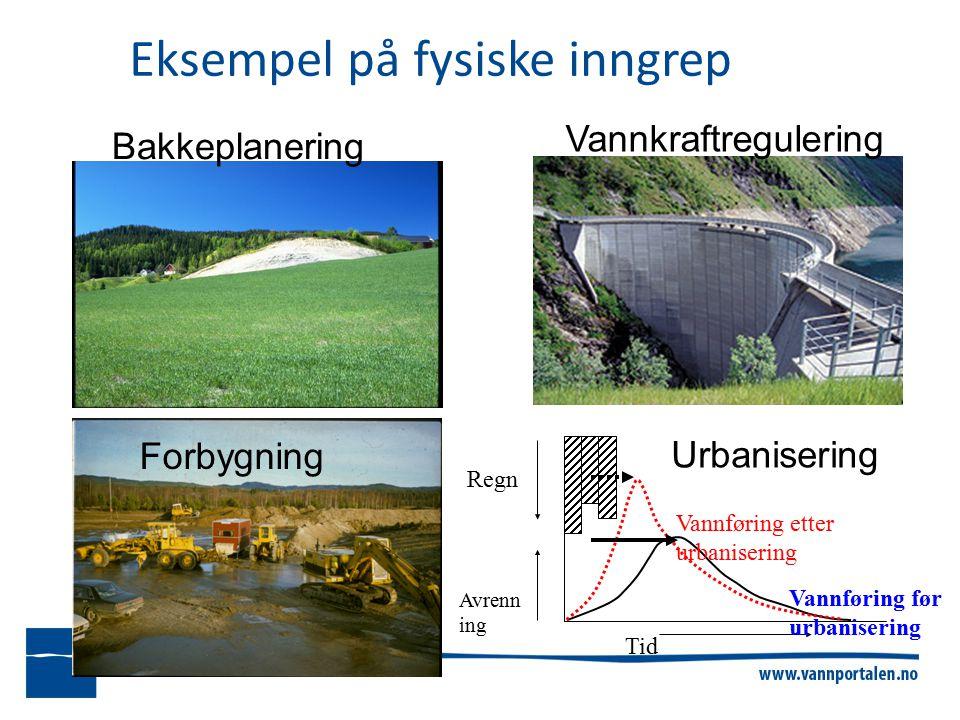 Eksempel på fysiske inngrep Tid Regn Avrenn ing Vannføring før urbanisering Vannføring etter urbanisering Bakkeplanering Urbanisering Forbygning Vannkraftregulering