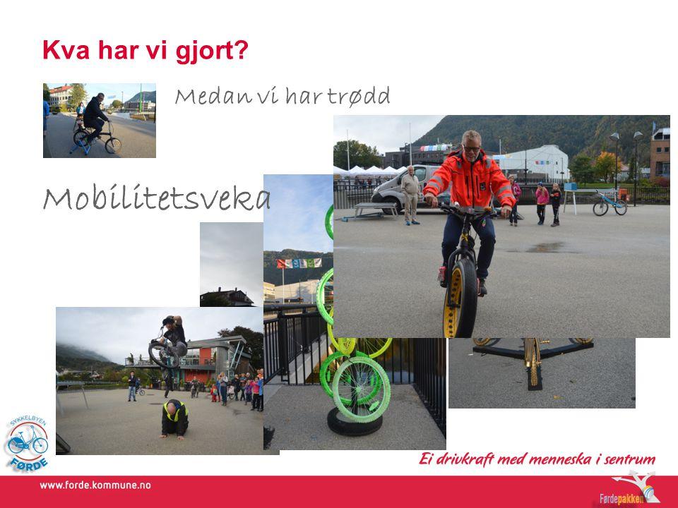 Kva gjer vi no.Organisering – sykkelby etter 2015 1.Kva kan det bli til.