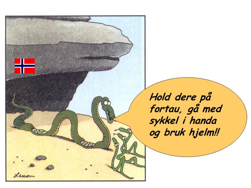 Hold dere på fortau, gå med sykkel i handa og bruk hjelm!! Norsk sykkel opplæring
