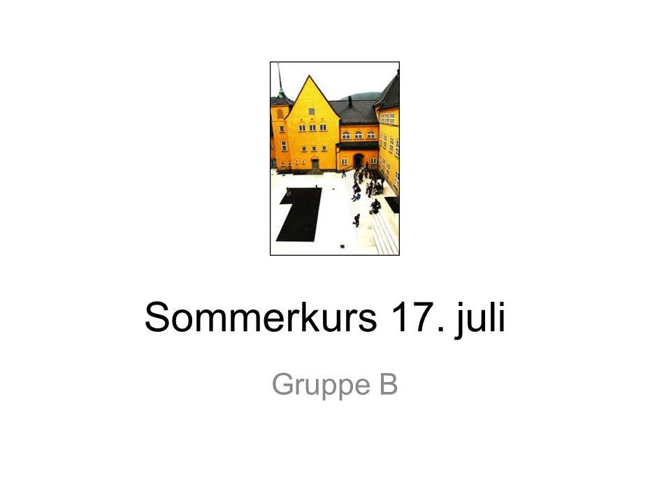 Sommerkurs 17. juli Gruppe B