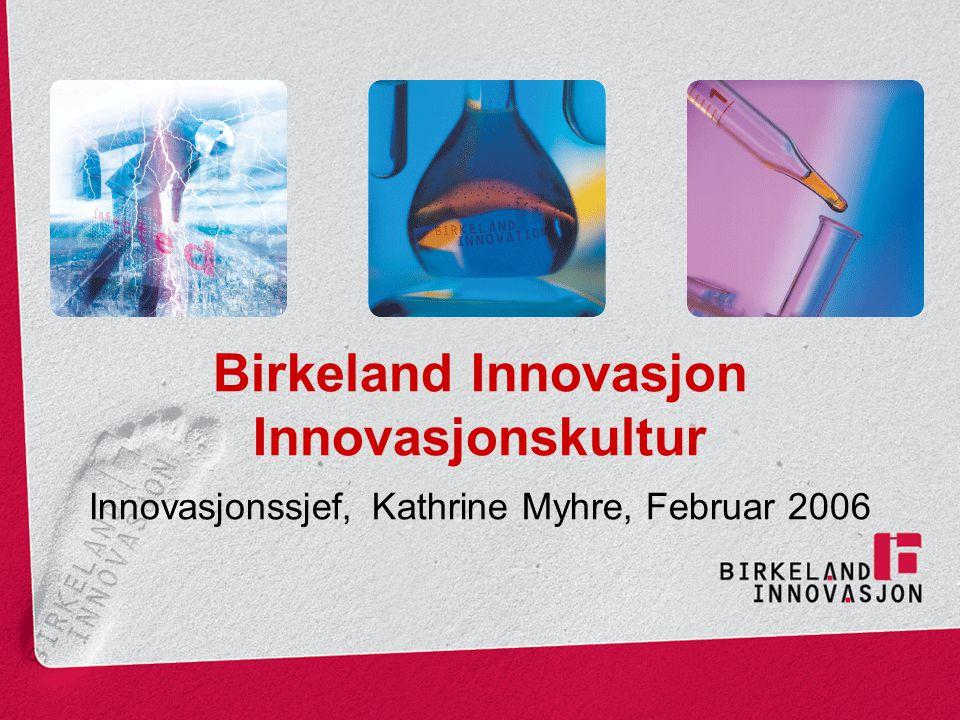 Birkeland Innovasjon Innovasjonskultur Innovasjonssjef, Kathrine Myhre, Februar 2006