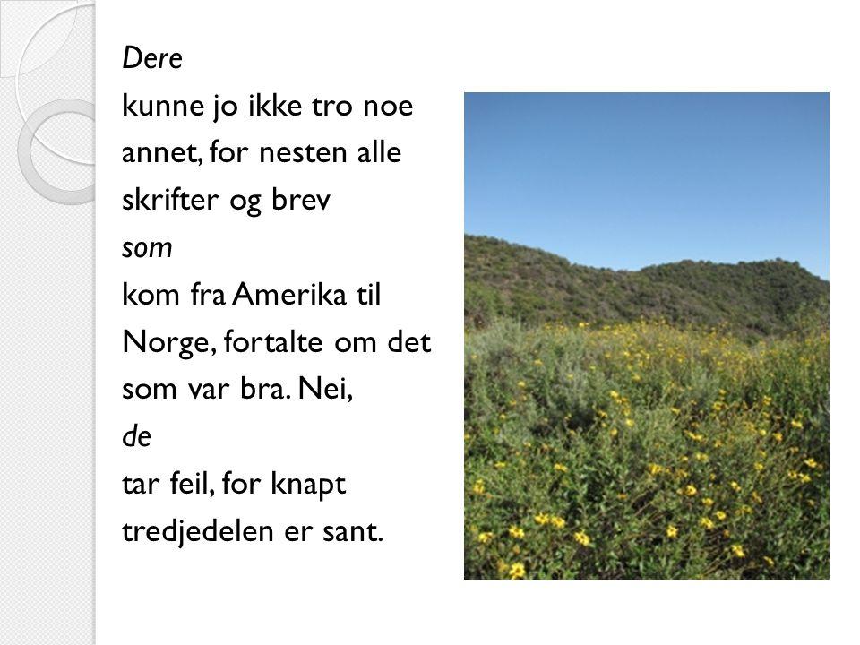 Dere kunne jo ikke tro noe annet, for nesten alle skrifter og brev som kom fra Amerika til Norge, fortalte om det som var bra.