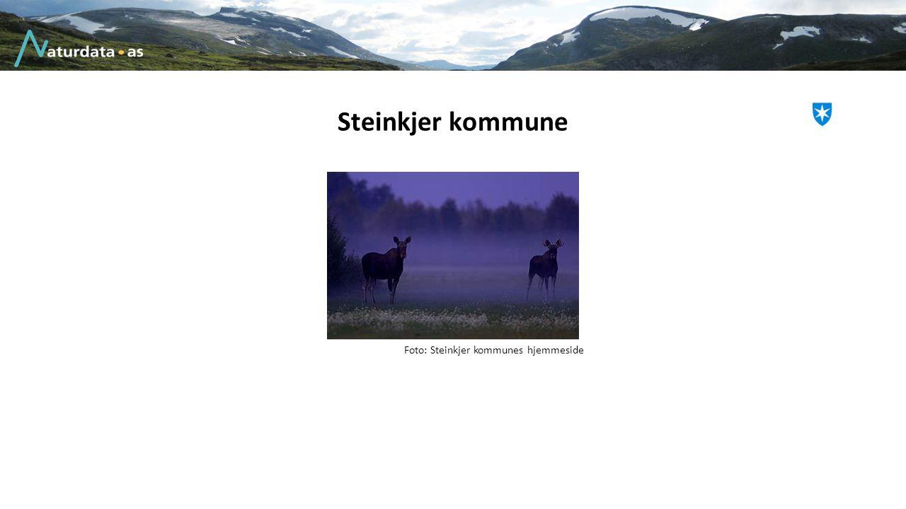Steinkjer kommune Foto: Steinkjer kommunes hjemmeside
