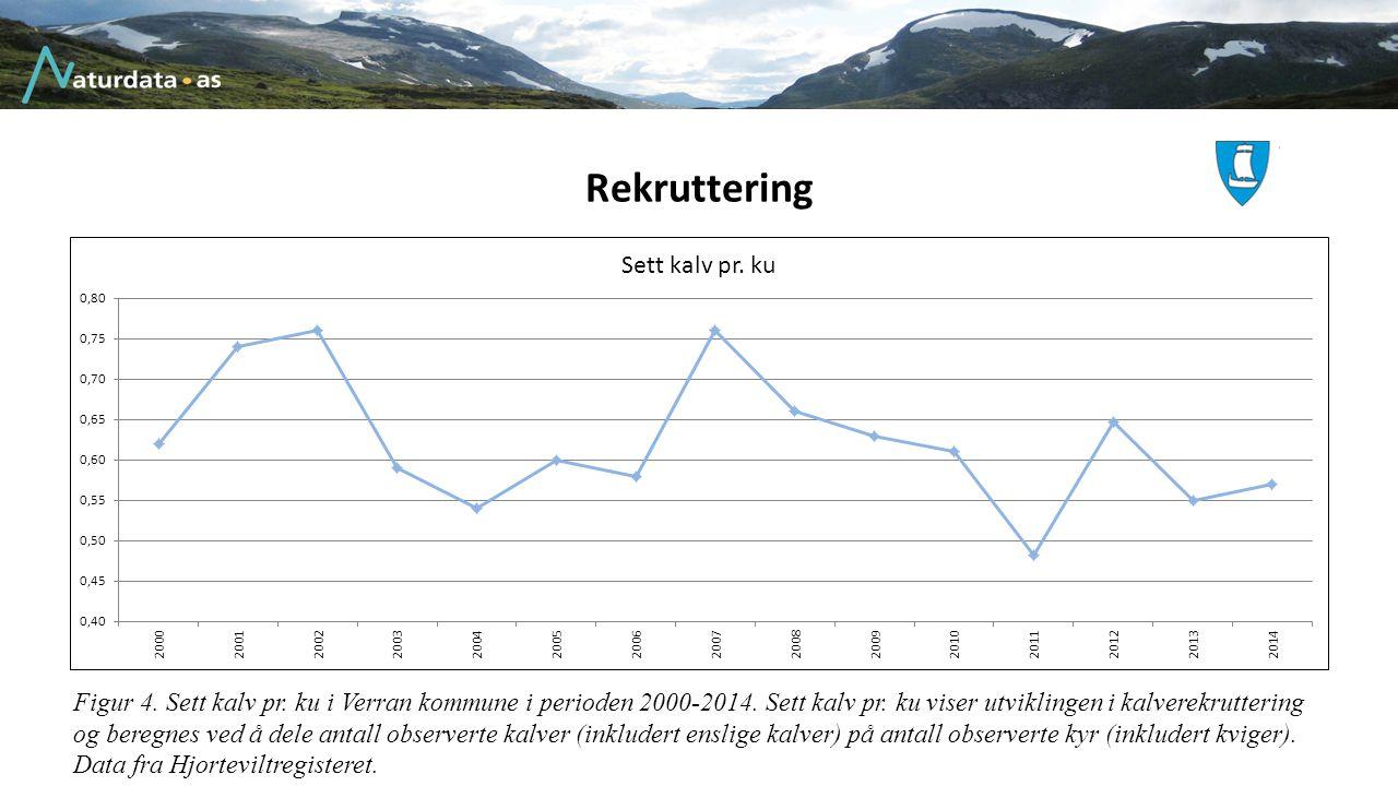 Rekruttering Figur 4. Sett kalv pr. ku i Verran kommune i perioden 2000-2014. Sett kalv pr. ku viser utviklingen i kalverekruttering og beregnes ved å