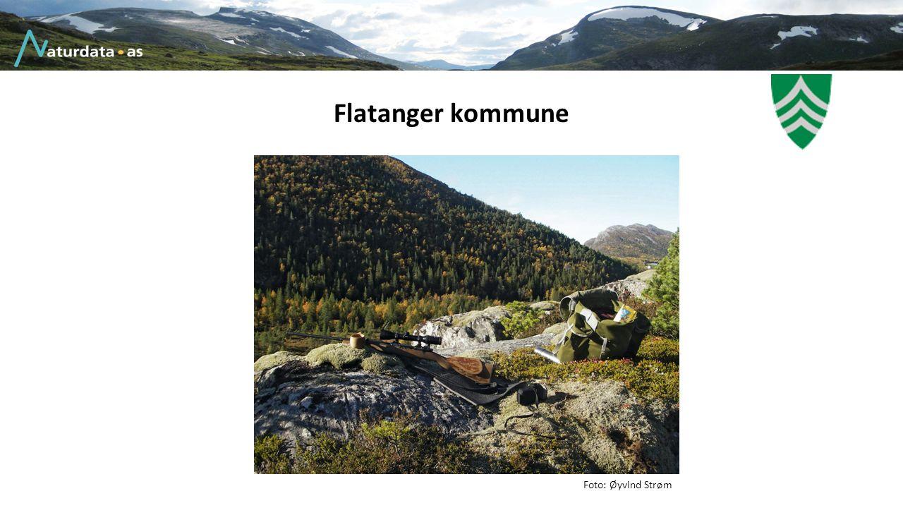 Flatanger kommune Foto: Øyvind Strøm