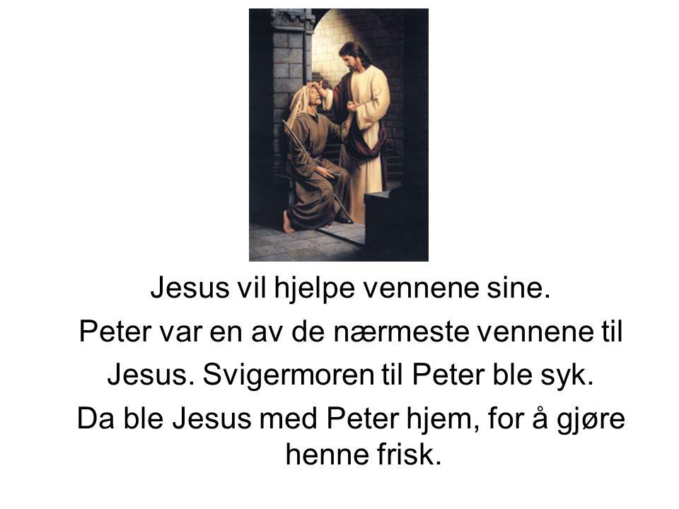 Jesus vil hjelpe vennene sine. Peter var en av de nærmeste vennene til Jesus. Svigermoren til Peter ble syk. Da ble Jesus med Peter hjem, for å gjøre