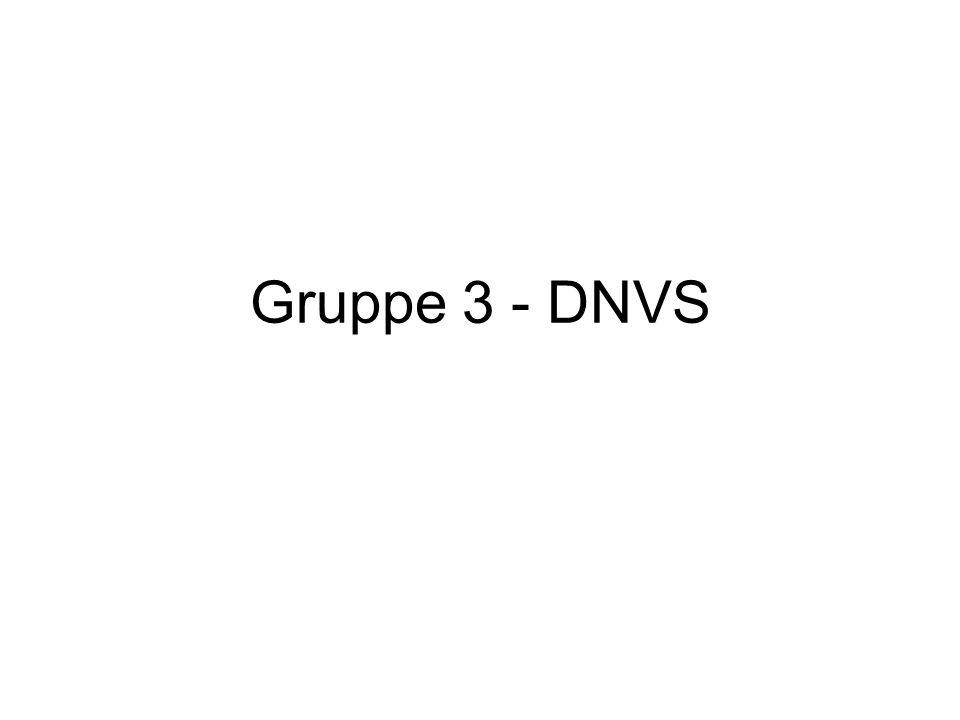 Gruppe 3 - DNVS
