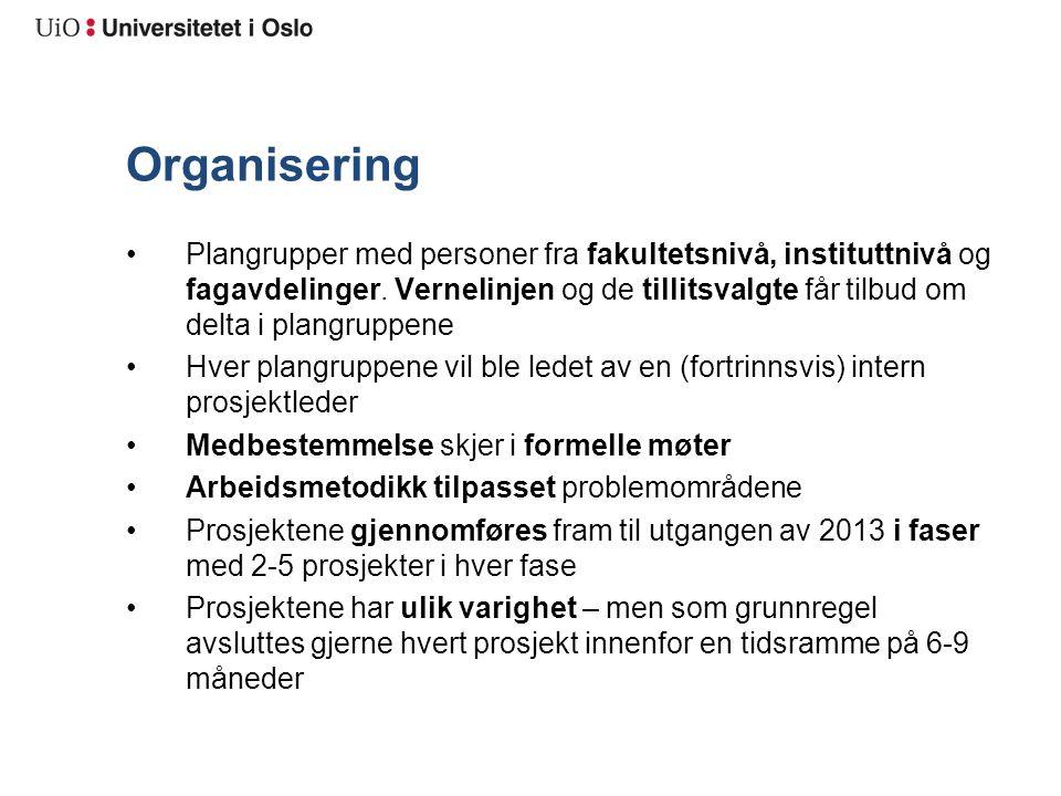 Organisering Plangrupper med personer fra fakultetsnivå, instituttnivå og fagavdelinger.
