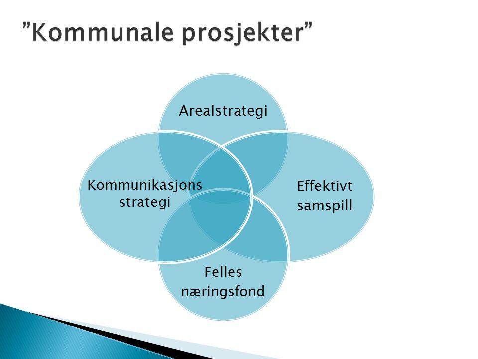 Arealstrategi Effektivt samspill Felles næringsfond Kommunikasjons strategi Kommunale prosjekter