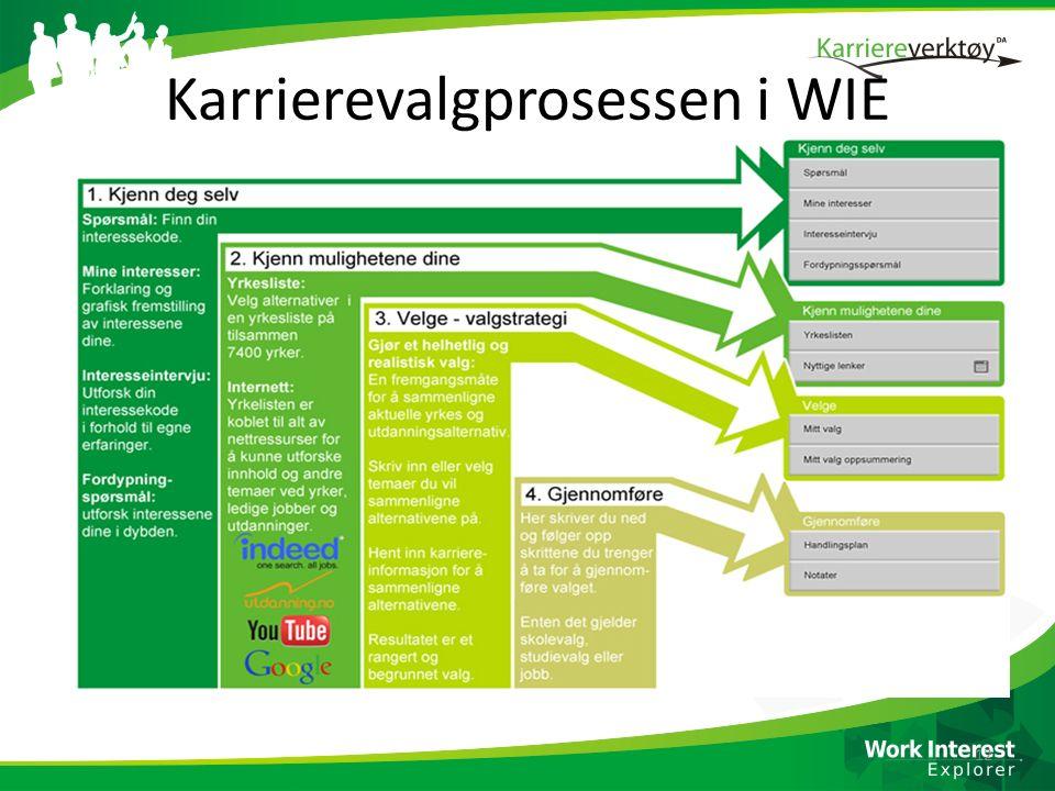 Karrierevalgprosessen i WIE 12
