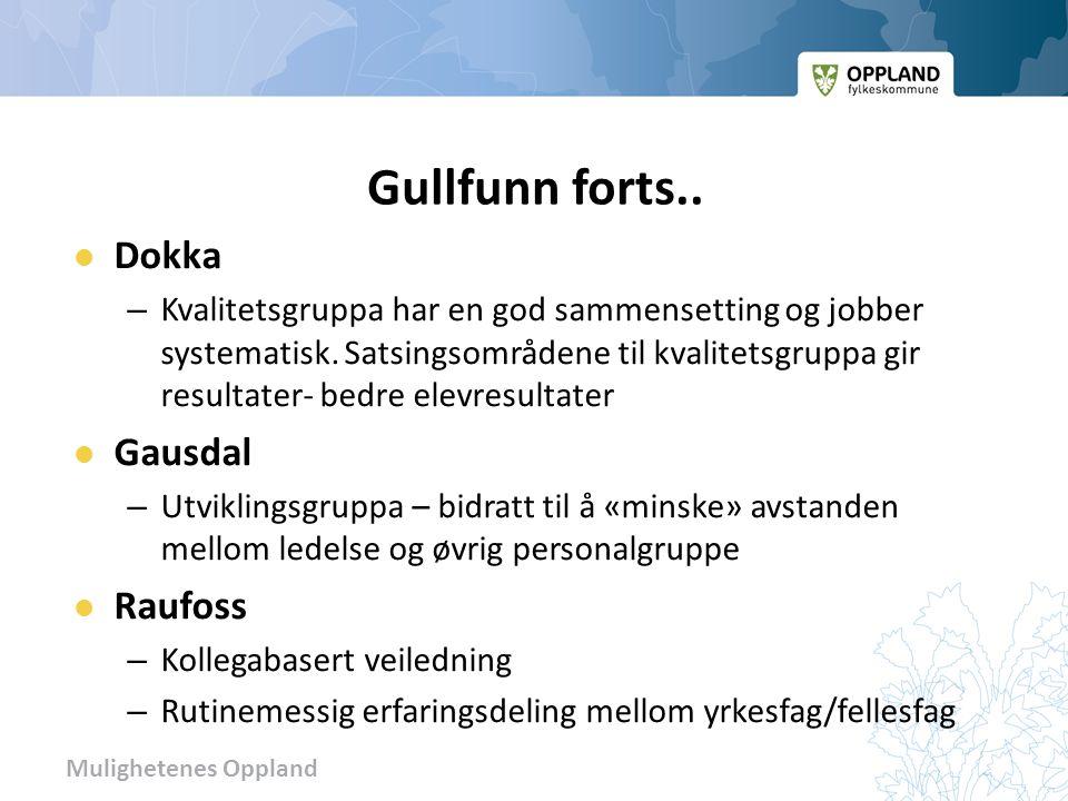 Mulighetenes Oppland Gullfunn forts..