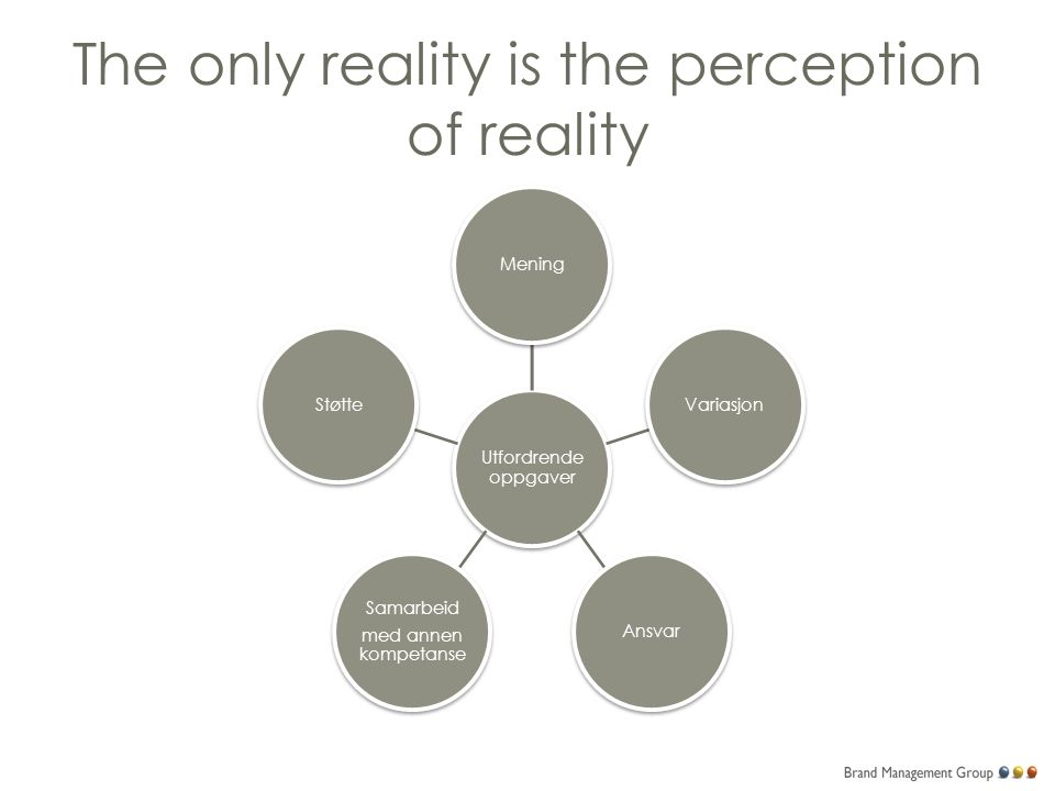 The only reality is the perception of reality Utfordrende oppgaver MeningVariasjonAnsvar Samarbeid med annen kompetanse Støtte
