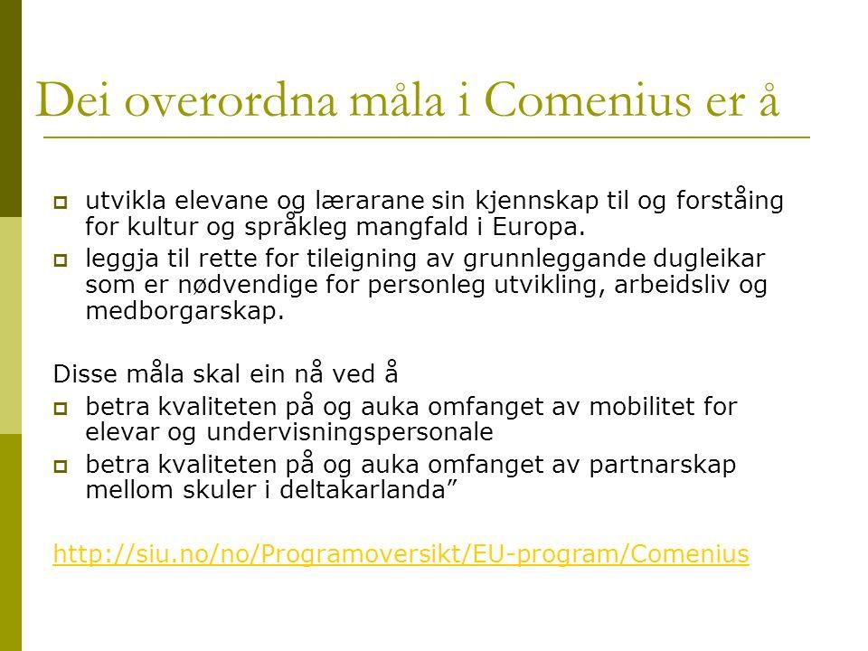 Dei overordna måla i Comenius er å  utvikla elevane og lærarane sin kjennskap til og forståing for kultur og språkleg mangfald i Europa.
