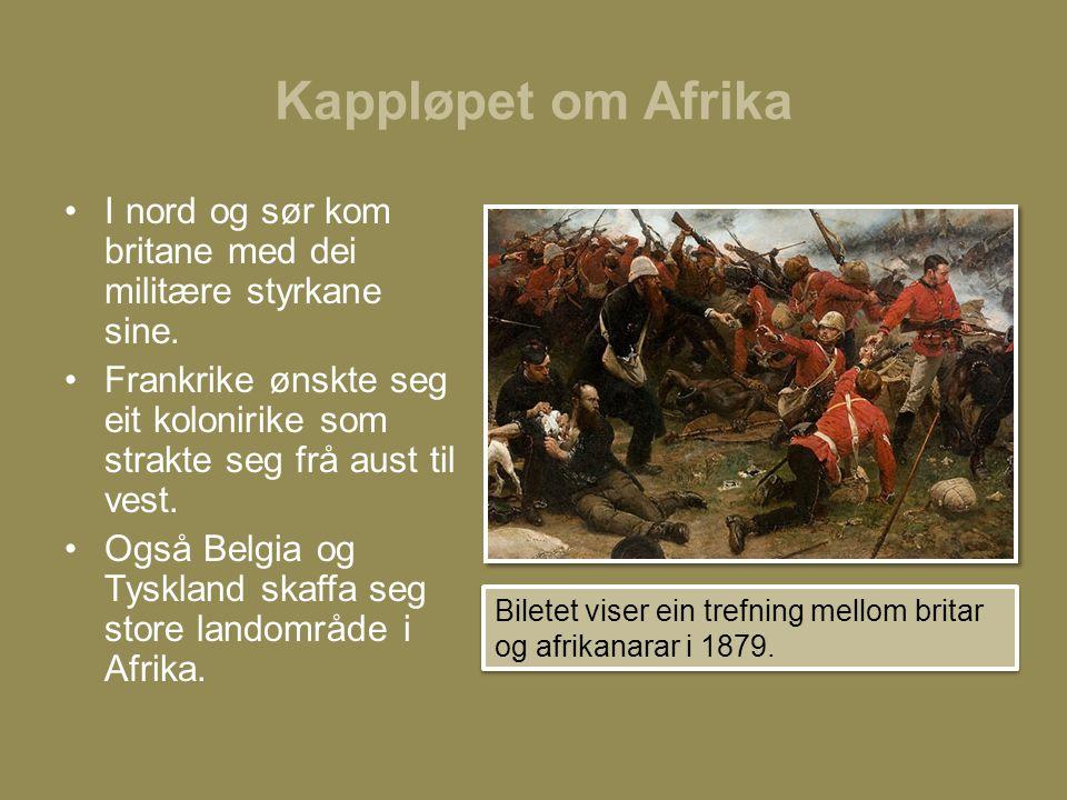 Kappløpet om Afrika I nord og sør kom britane med dei militære styrkane sine.