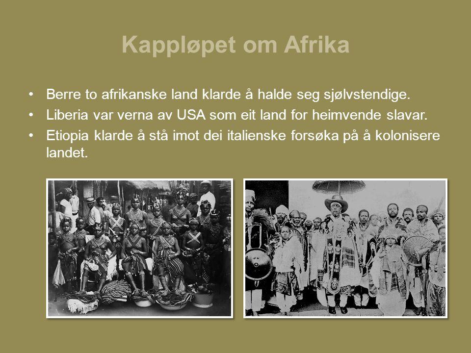 Kappløpet om Afrika Berre to afrikanske land klarde å halde seg sjølvstendige.
