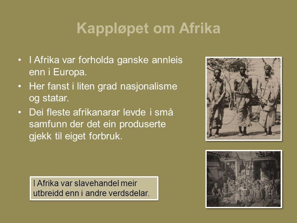 Kappløpet om Afrika I Afrika var forholda ganske annleis enn i Europa.