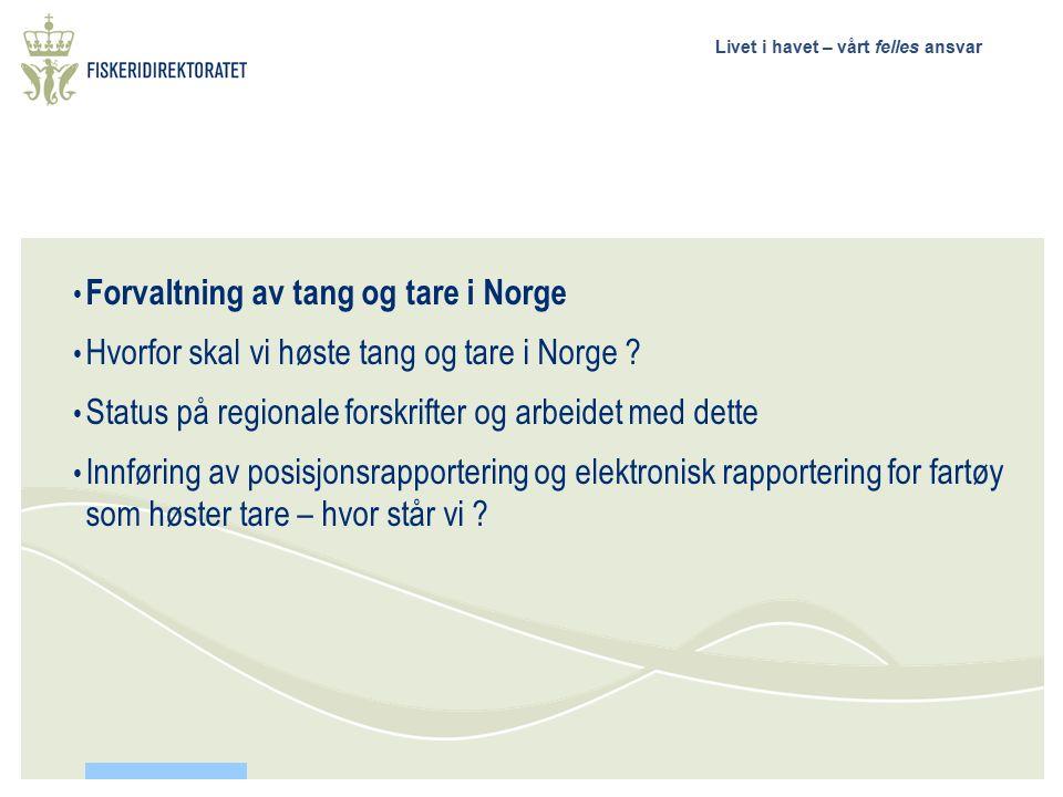 Livet i havet – vårt felles ansvar Forvaltning av tang og tare i Norge Hvorfor skal vi høste tang og tare i Norge ? Status på regionale forskrifter og