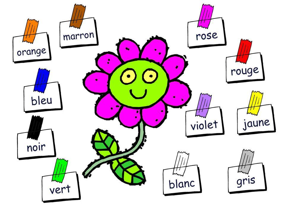 Vocabulary & Structures What colour is it? C'est de quelle couleur? C'est... It's... Teacher Notes