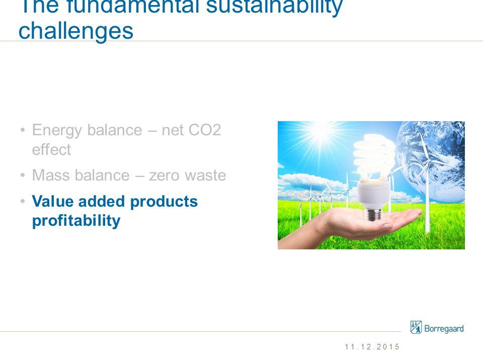 The fundamental sustainability challenges Energy balance – net CO2 effect Mass balance – zero waste Value added products profitability 11.12.2015