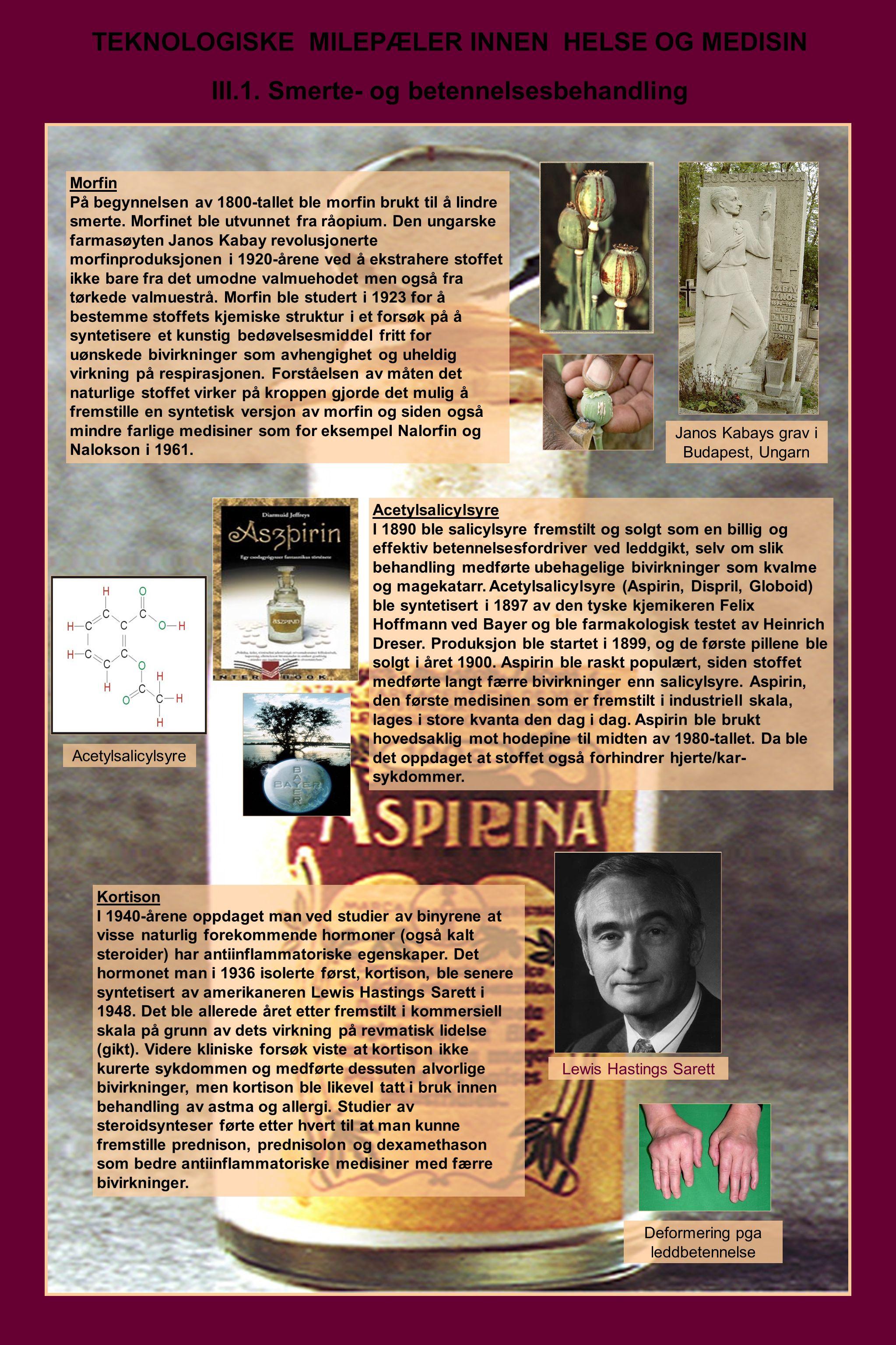 TEKNOLOGISKE MILEPÆLER INNEN HELSE OG MEDISIN III.1. Smerte- og betennelsesbehandling Morfin På begynnelsen av 1800-tallet ble morfin brukt til å lind
