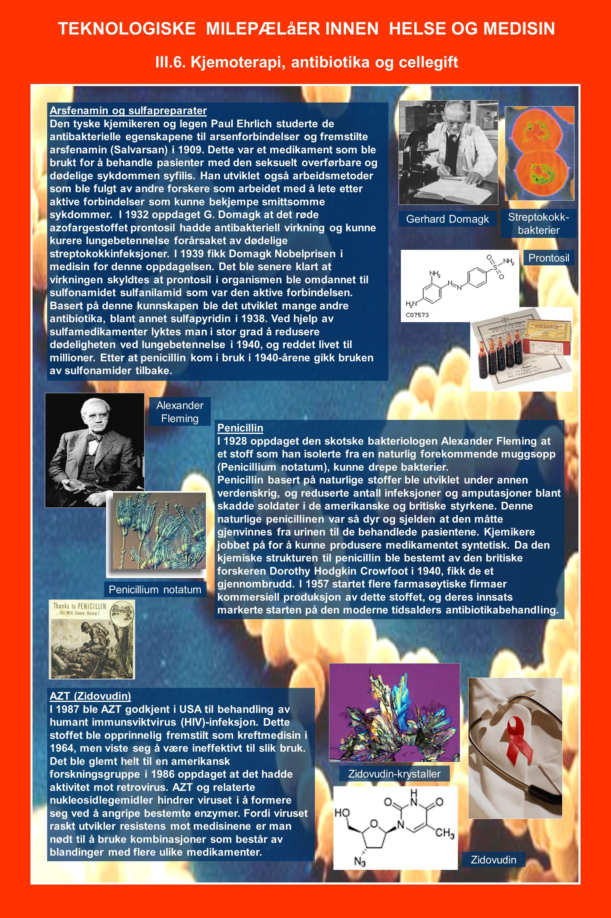 TEKNOLOGISKE MILEPÆLåER INNEN HELSE OG MEDISIN III.6. Kjemoterapi, antibiotika og cellegift Arsfenamin og sulfapreparater Den tyske kjemikeren og lege
