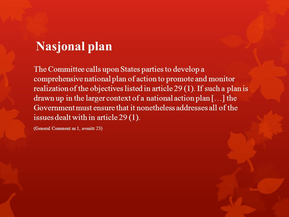 Nasjonal plan The Committee calls upon States parties to develop a comprehensive national plan of action to promote and monitor realization of the objectives listed in article 29 (1).