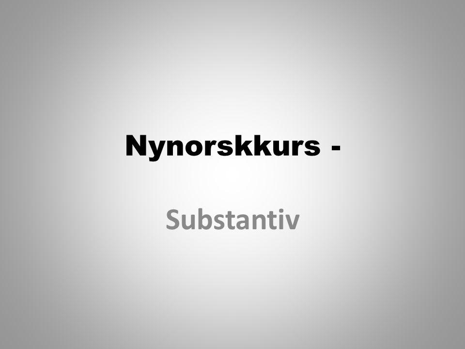 Nynorskkurs - Substantiv
