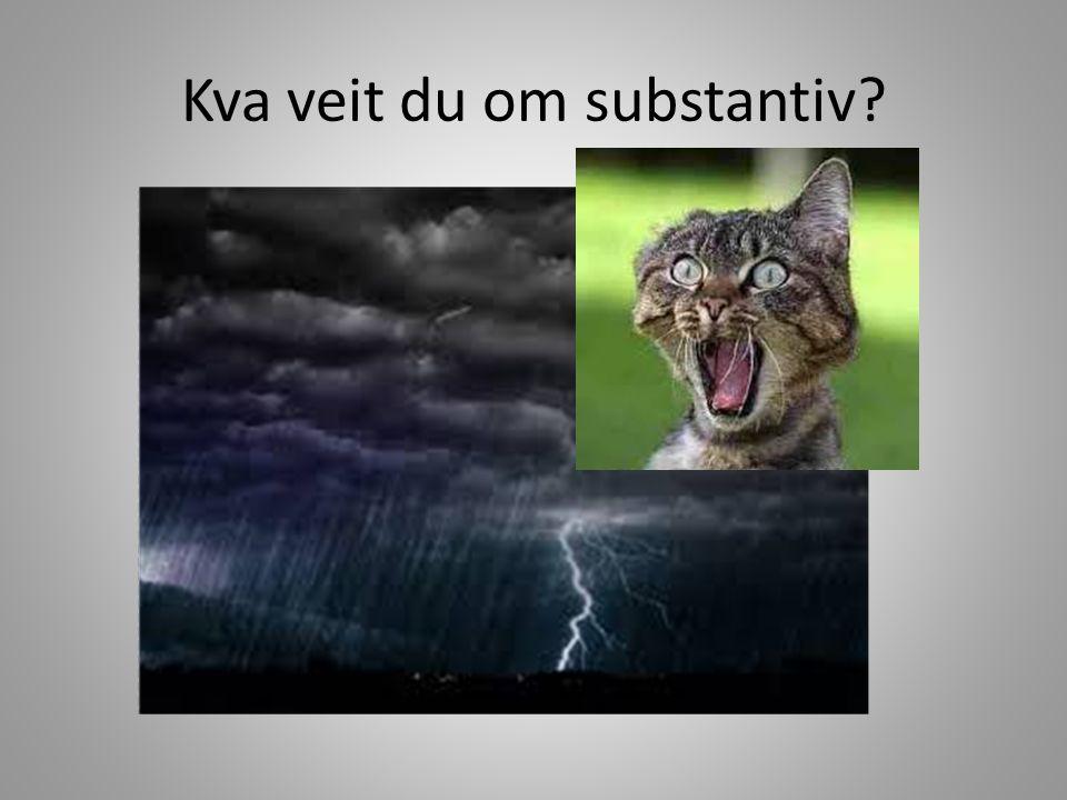 Kva veit du om substantiv?