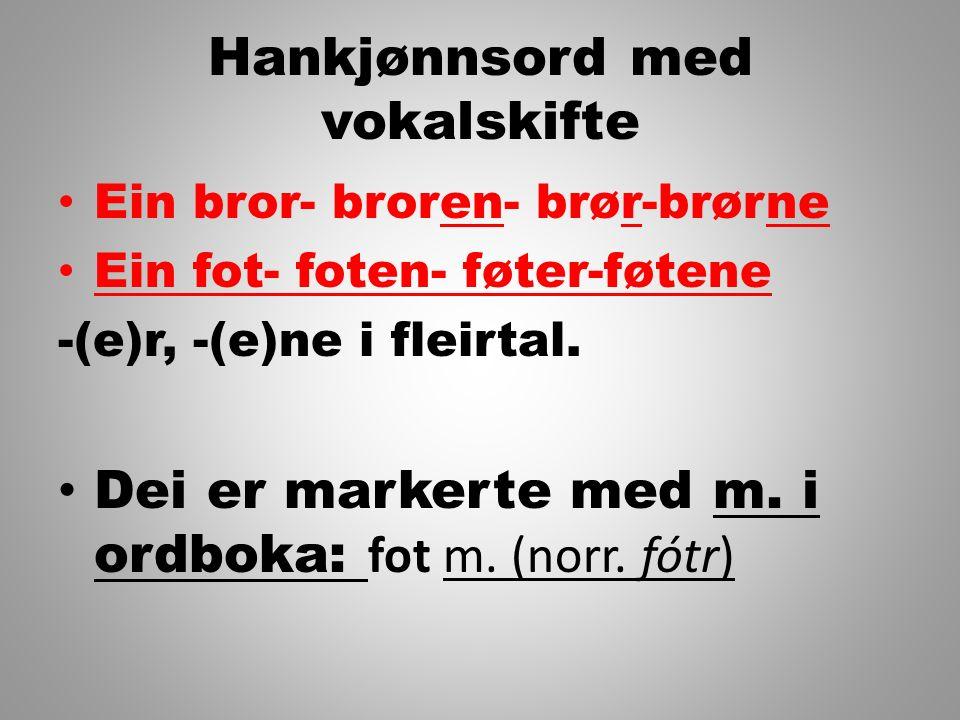 Hankjønnsord med vokalskifte Ein bror- broren- brør-brørne Ein fot- foten- føter-føtene -(e)r, -(e)ne i fleirtal. Dei er markerte med m. i ordboka: fo