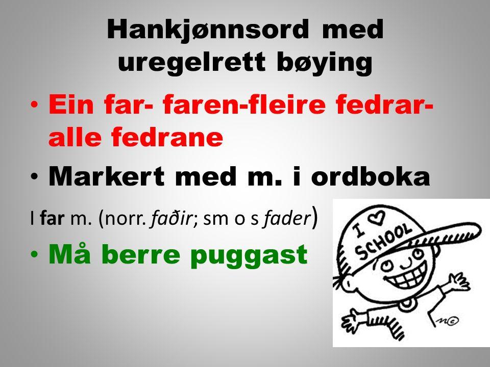 Oppgåve - logg Gå saman i makkarpar og les loggane dykkar skreiv i dag.