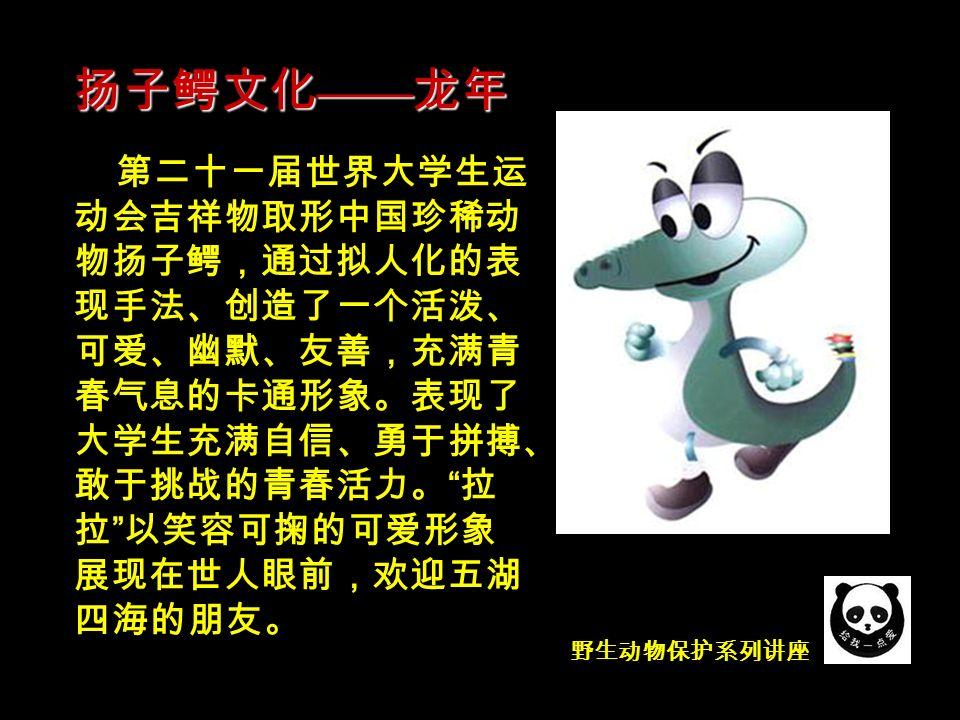 野生动物保护系列讲座 第二十一届世界大学生运 动会吉祥物取形中国珍稀动 物扬子鳄,通过拟人化的表 现手法、创造了一个活泼、 可爱、幽默、友善,充满青 春气息的卡通形象。表现了 大学生充满自信、勇于拼搏、 敢于挑战的青春活力。 拉 拉 以笑容可掬的可爱形象 展现在世人眼前,欢迎五湖 四海的朋友。 扬子鳄文化 —— 龙年