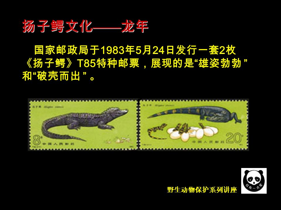 野生动物保护系列讲座 国家邮政局于 1983 年 5 月 24 日发行一套 2 枚 《扬子鳄》 T85 特种邮票,展现的是 雄姿勃勃 和 破壳而出 。 扬子鳄文化 —— 龙年